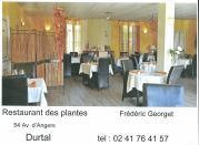 restaurant-de-plantes-jpg-1.jpg